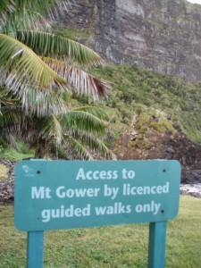 Mount Gower